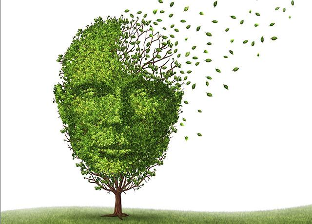 illustration of a tree in the shape of a human face, with its leaves blowing off