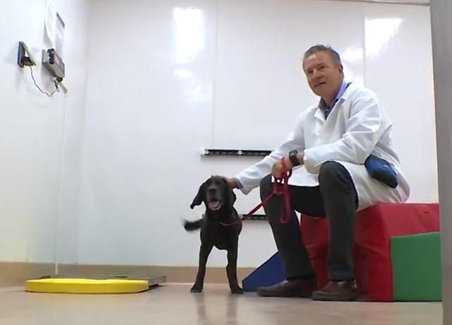 Dr. Martin Childers with one of the dogs successfully treated for the muscle-wasting disease.