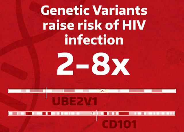 graphic of gene variants discovered for heightened HIV risk