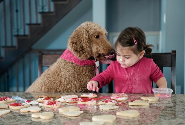 child decorating cookies