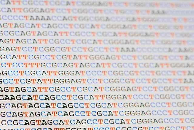 picture of gene sequences