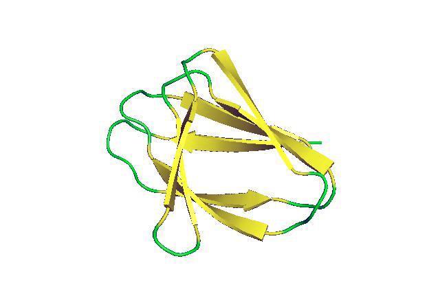non-local beta sheet proteins computer designed