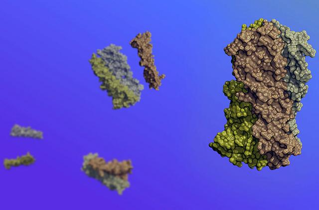 synthetic protein that moves in response to its environment