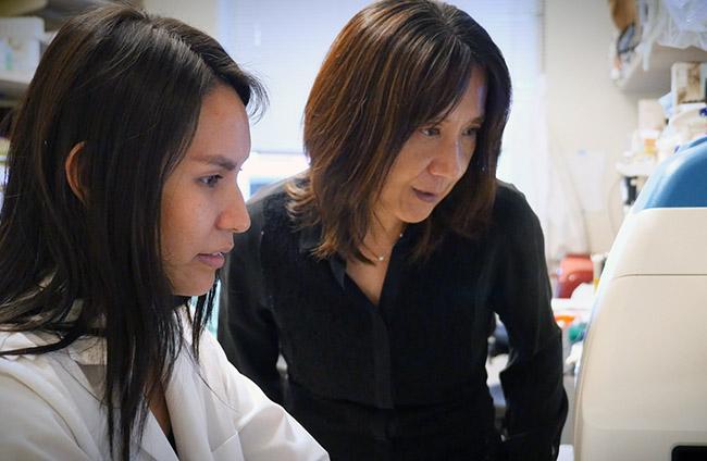 Tian mitochondria lab