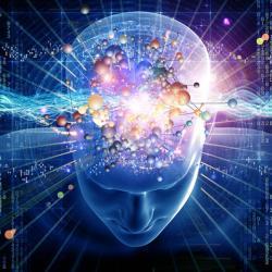 3-D image of brain