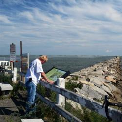 Beach area Cape Cod closed to shellfish harvesting