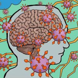 illustration of brain and pandemic coronavirus