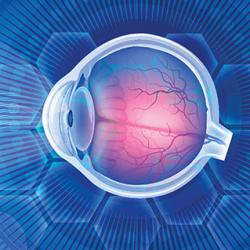 illustration of human eyeball