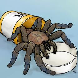 drawing of tarantula coming out of a pill bottle