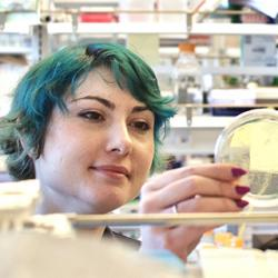 Brooke Fiala, Neil King Institute for Protein Design