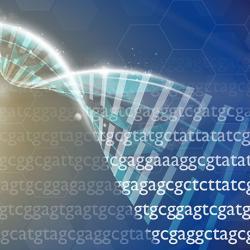DNA RNA