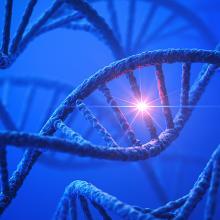 Artists rendering of a DNA molecule