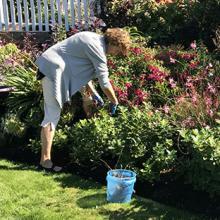 Karen working in the garden