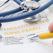 picture of a lipid panel test result