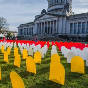 picture of suicide-prevention protest at Washington state capitol in Olympia