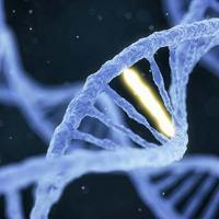 Photo of a single gene