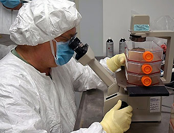 picture of researchers working with a Zika vaccine in test.